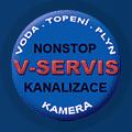 logo fy V-servis