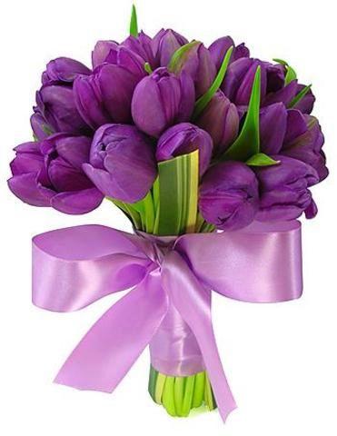 Puget tulipánů