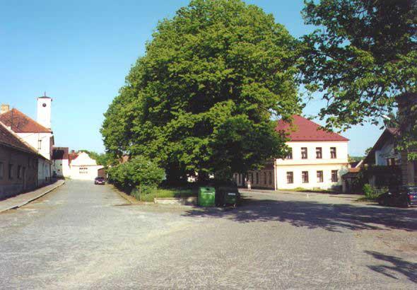 Obec Radomyšl