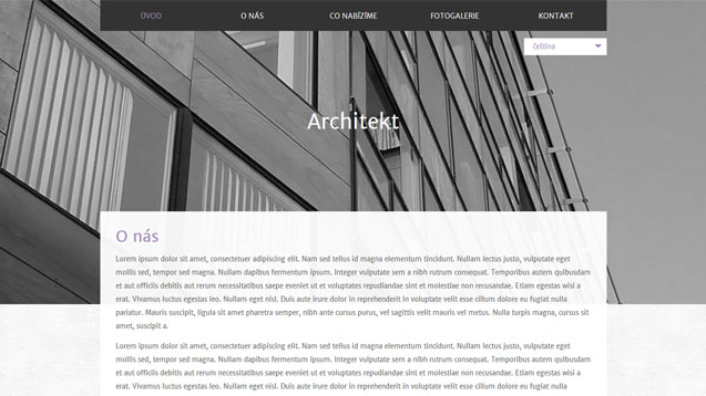 Architekt fialová šablona číslo 594