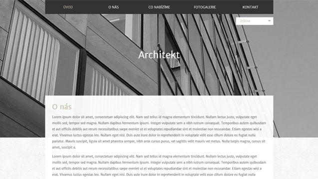 Architekt béžová šablona číslo 595