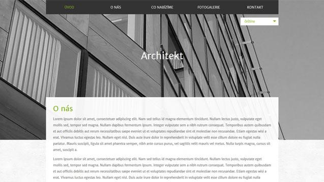 Architekt zelená šablona číslo 583