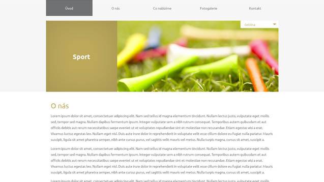 Sport béžová šablona číslo 621