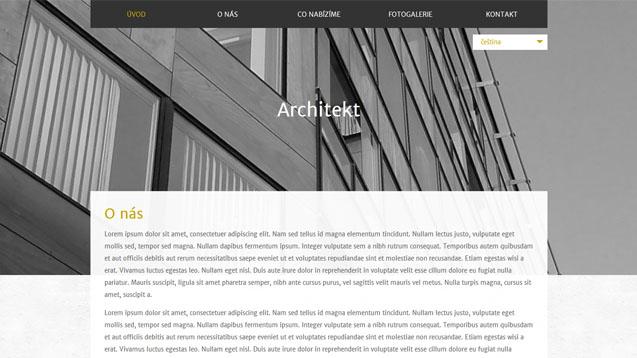 Architekt tmavě žlutá šablona číslo 584