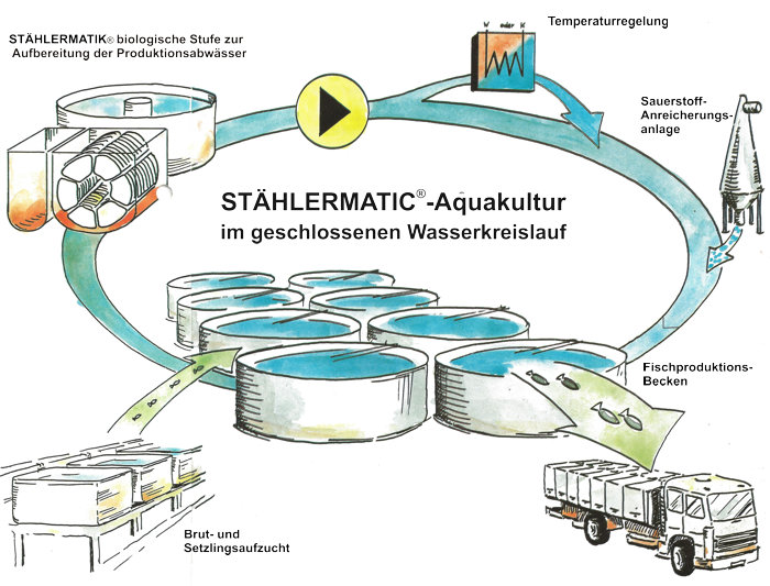 Fish Farm Diagram Example Electrical Wiring Diagram