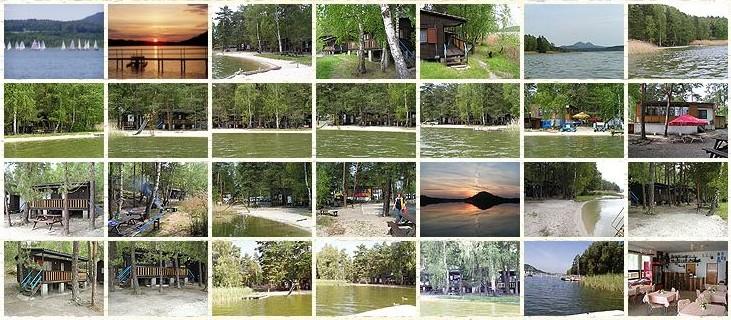 Hotel Arnika Máchovo jezero