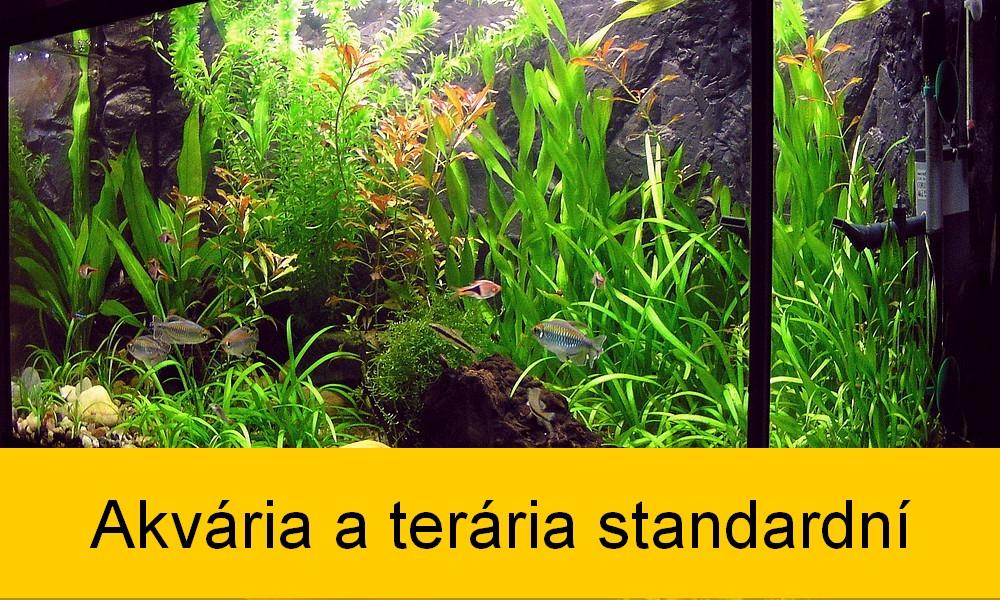 Akvária standart