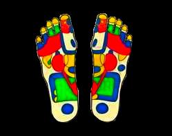 reflexní zóny na chodidlech