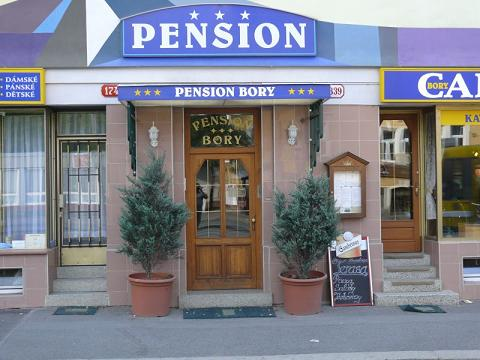 Penzion Bory - vstup