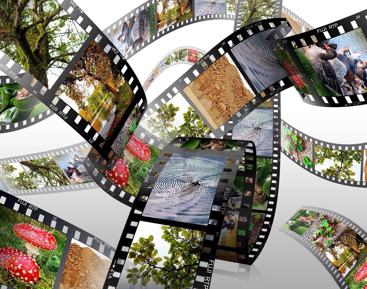 barevné filmy do foťáku