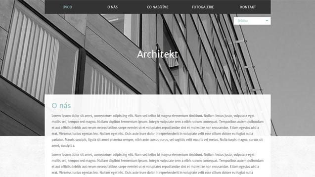 Architekt tyrkysová šablona číslo 590