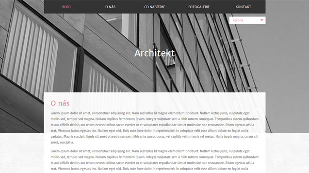 Architekt růžová šablona číslo 589