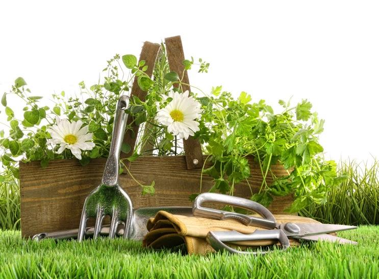 Zahradnické náčiní