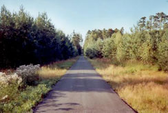 Penzion Karlos Třeboň in-line trasy