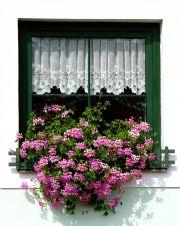 Oprava plastových oken brno