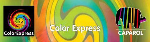 Logo Color expres