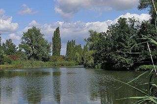 Holásecká jezera