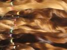 pannenské vlasy